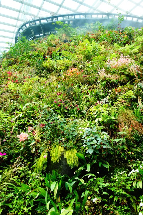 Wall of flora