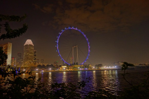 Singapore Flyer in the night