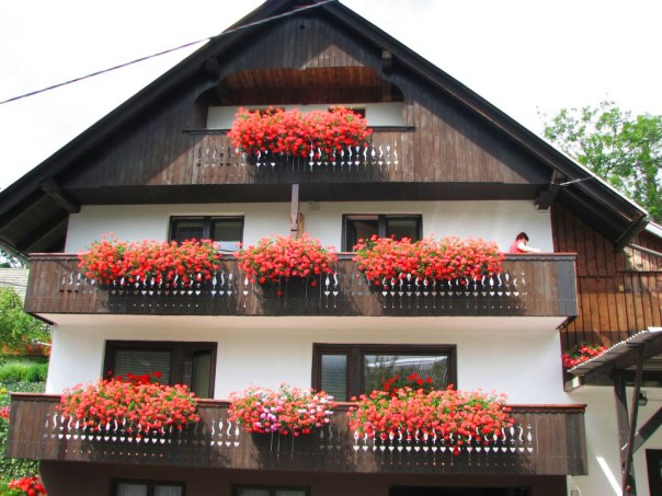One of the many pretty Alpine houses I saw walking through the Bohinj Village.