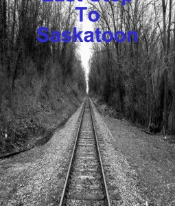 REVIEW: LAST STOP TO SASKATOON – TONY NESCA (SCREAMING SKULL PRESS)