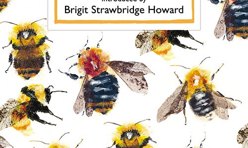 REVIEW: 10 POEMS ABOUT BEES (CANDLESTICK PRESS)
