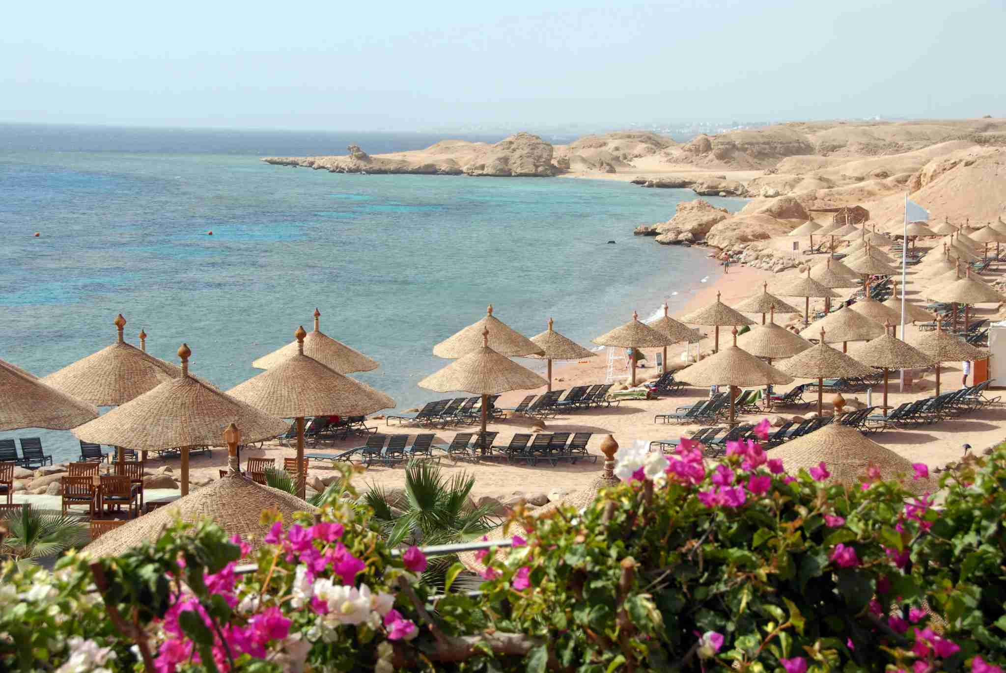 Beach with parasols and blooming bougainvillea near Sharm el-Sheikh,Red Sea,Egypt.