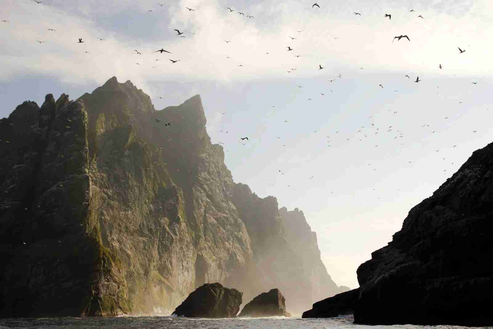 The steep cliffs of St Kilda. (Photo by claffra/Getty Images)