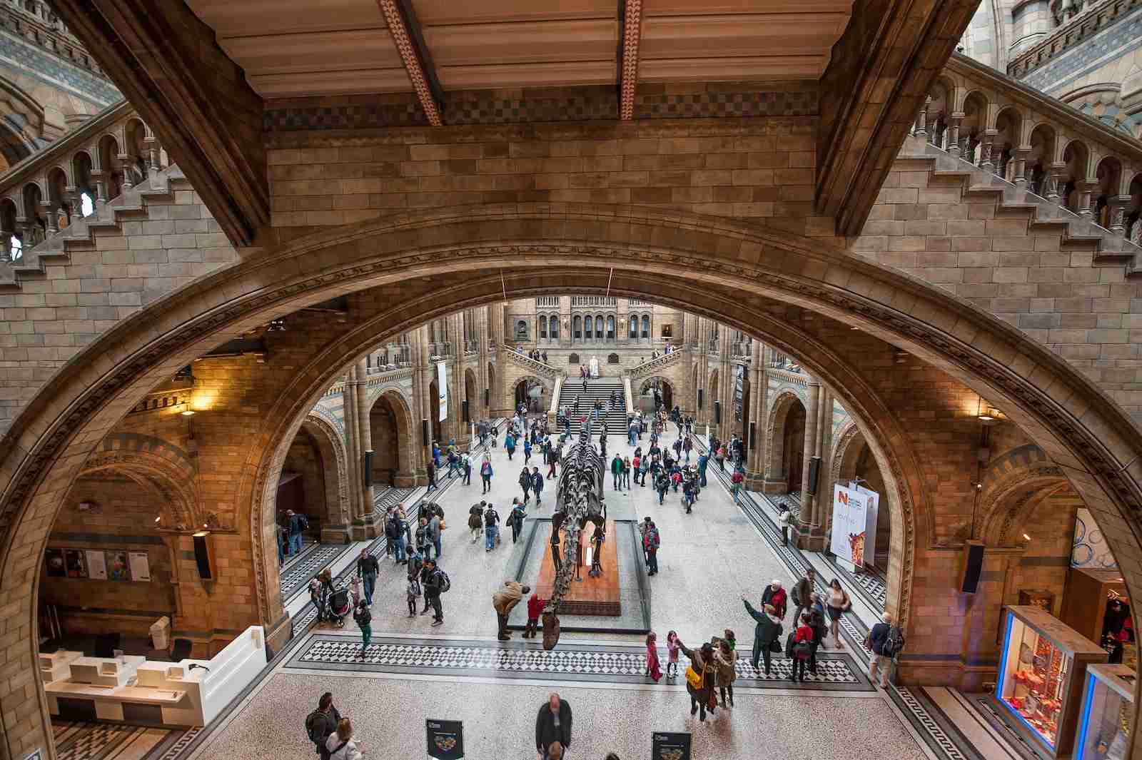 The Natural History Museum of London. (Photo by Tim Grist/Getty Images)