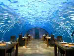 Ithaa Underwater restaurant at the Conrad Maldives.