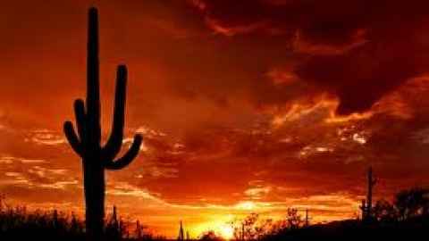 Destination of the Week: Tucson, Arizona – The Points Guy