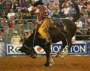 houston-livestock-and-rodeo-show