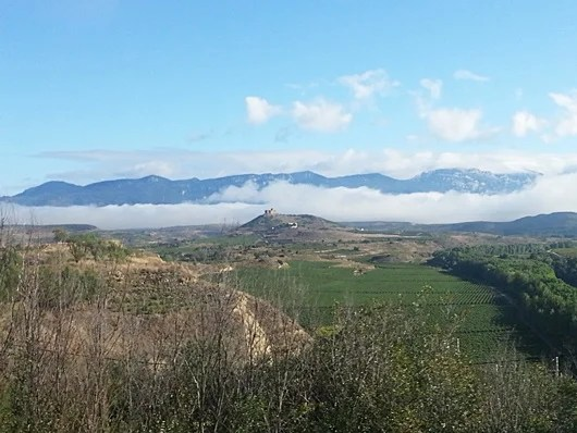 Driving through La Rioja is absolutely stunning