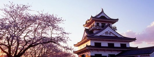 Earn double miles to Asia on American Airlines.