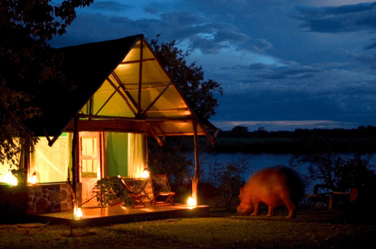 Snack alongside hippos at Mvuu Camp in Liwonde National Park. Photo credit: Central African Safaris.