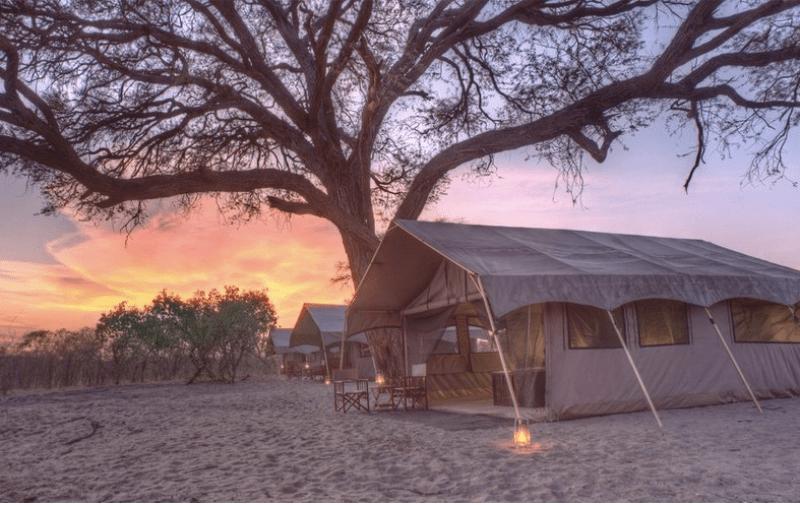 &beyond's stunning Savute Under Canvas camp in the Chobe River region.