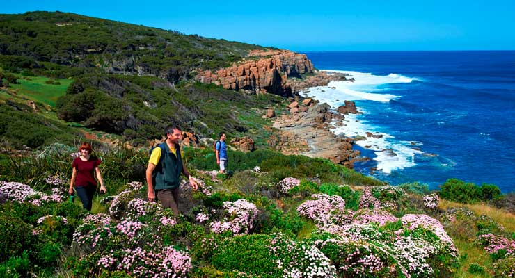Hiking along the Cape to Cape Track during wildflower season. Image courtesy of Tourism Western Australia.