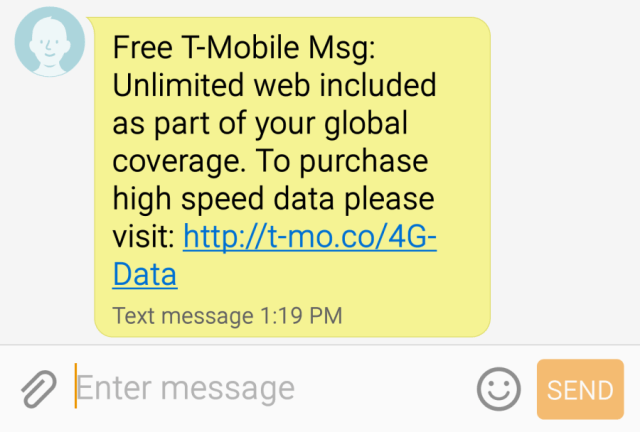No data roaming fees with T-Mobile.