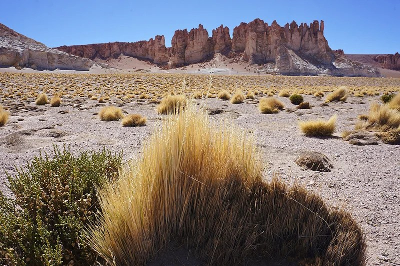 The Devils' Towers in the heart of Chile's Atacama Desert.