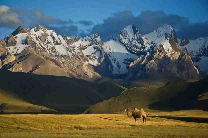 Feel like something exotic? Try Kyrgyzstan. Photo courtesy of Shutterstock.