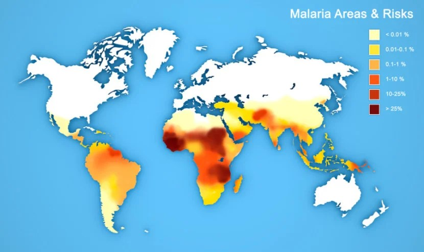 Get vaccines before you leave. (Please note, this map is just an example photo and may not be accurate or up-to-date). Photo courtesy of Shutterstock.