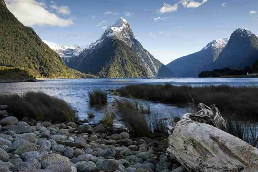 Mitre Peak in Milford Sound on the South island of New Zealand. Photo courtesy of Shutterstock.