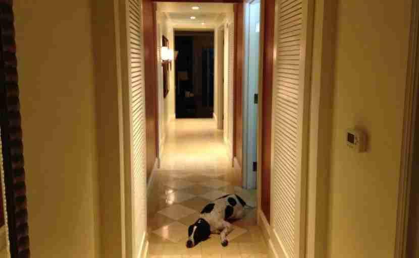 VB Hotel & Spa hallway