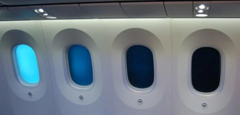Risultati immagini per 787 windows