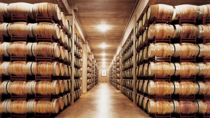 Taste wine at the onsite Marqués de Riscal Winery.