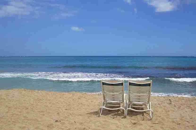 Ocean Park is delightfully calm.