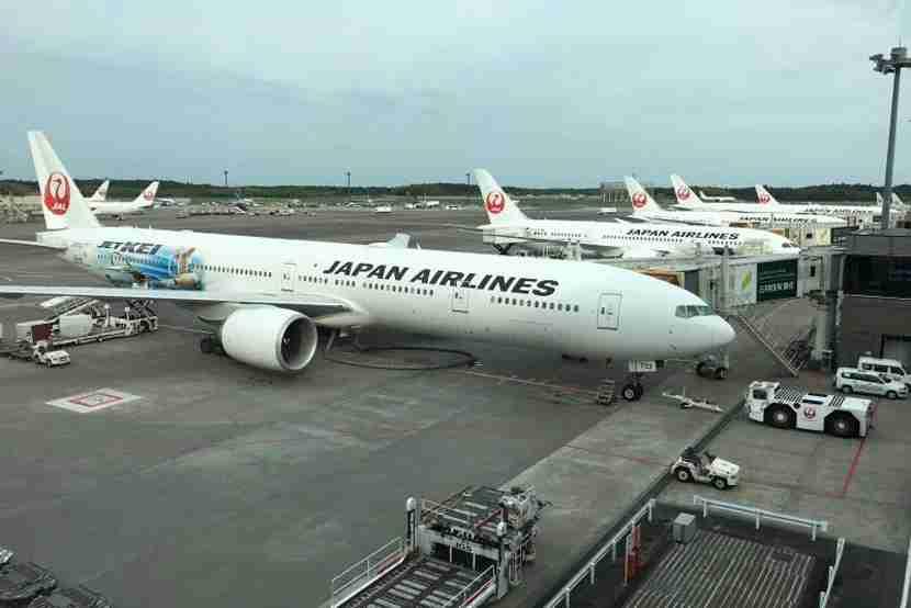 JAL planes lined up at Terminal 2 Narita airport.