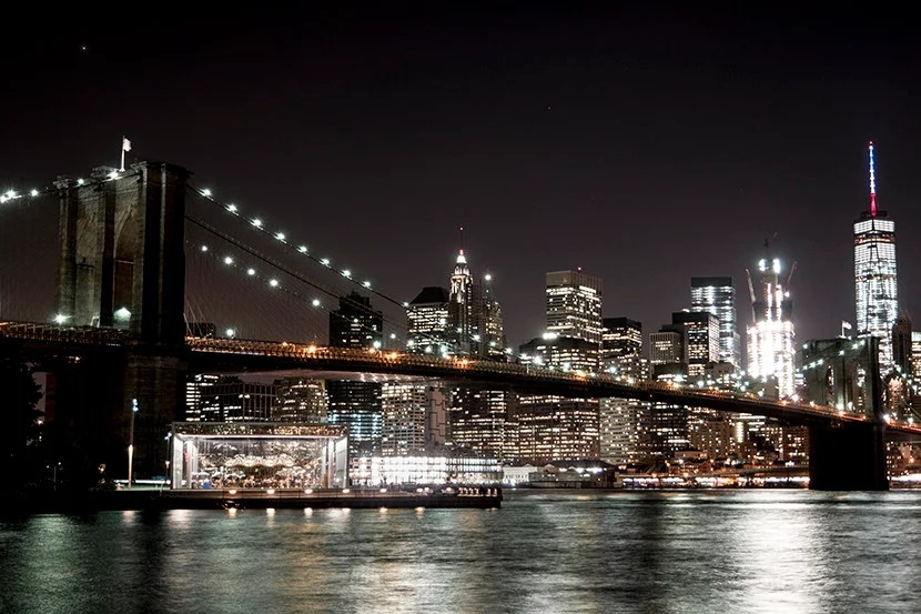 Downtown Manhattan, as viewed from Brooklyn Bridge Park. Image by Mitch Berman.