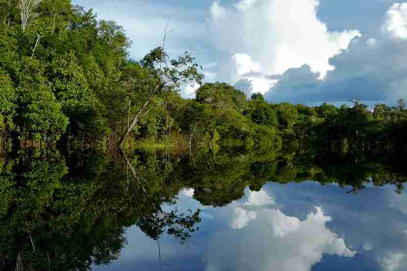 "The Amazon River, image courtesy of <a href=""http://www.shutterstock.com/pic-58189210/stock-photo-amazon-river-brazil.html?src=zNbFvg4uNdfsdAbgnTuicw-1-2"">Shutterstock</a>."