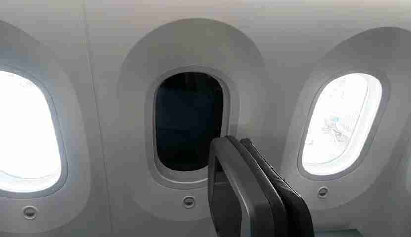 The windows on this Dreamliner get exceptionally dark.