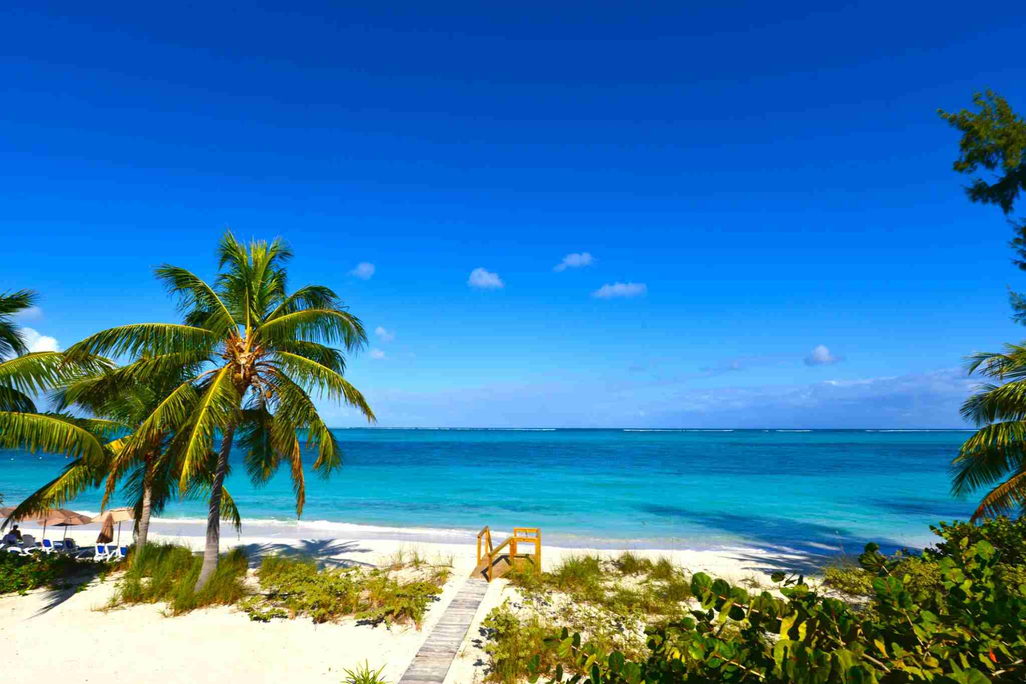A sunny day at Grace Bay Beach in Providenciales, Turks and Cacos. A walkway on a white sandy is bordered by palm trees and plants. The calm ocean stretches out towards the horizon under a deep blue sky.