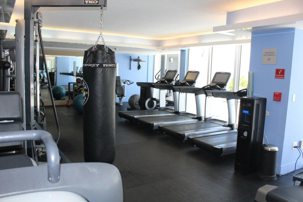 The gym contains boxing equipment, free weights, cardio and yoga equipment.