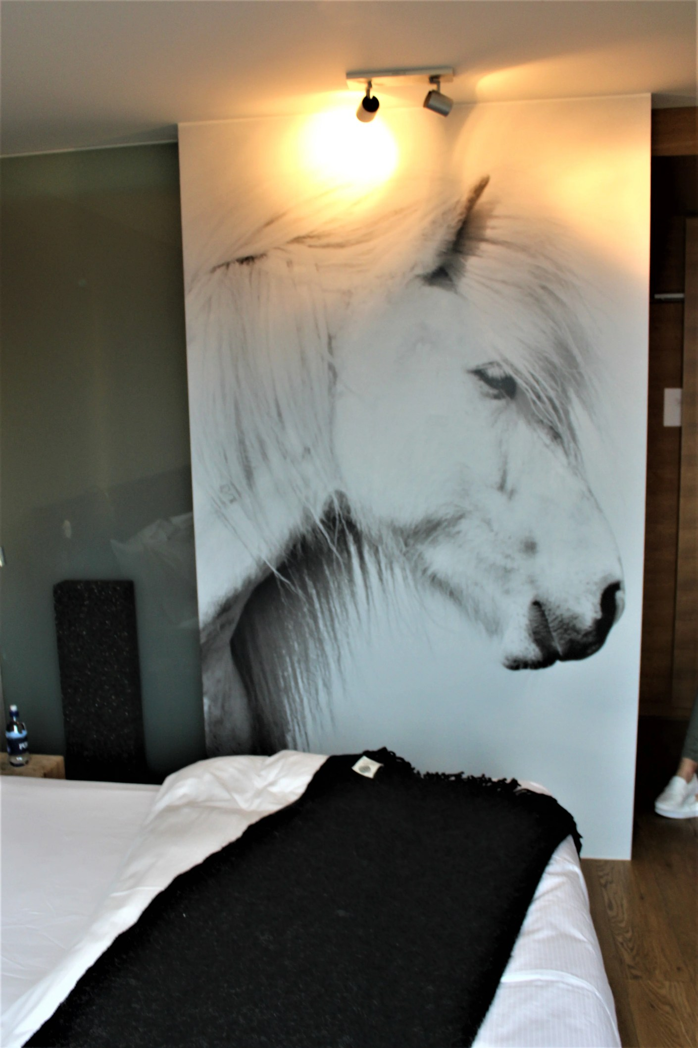 A mural featuring a quintessential icelandic horse was displayed constantly thoughtout the property.