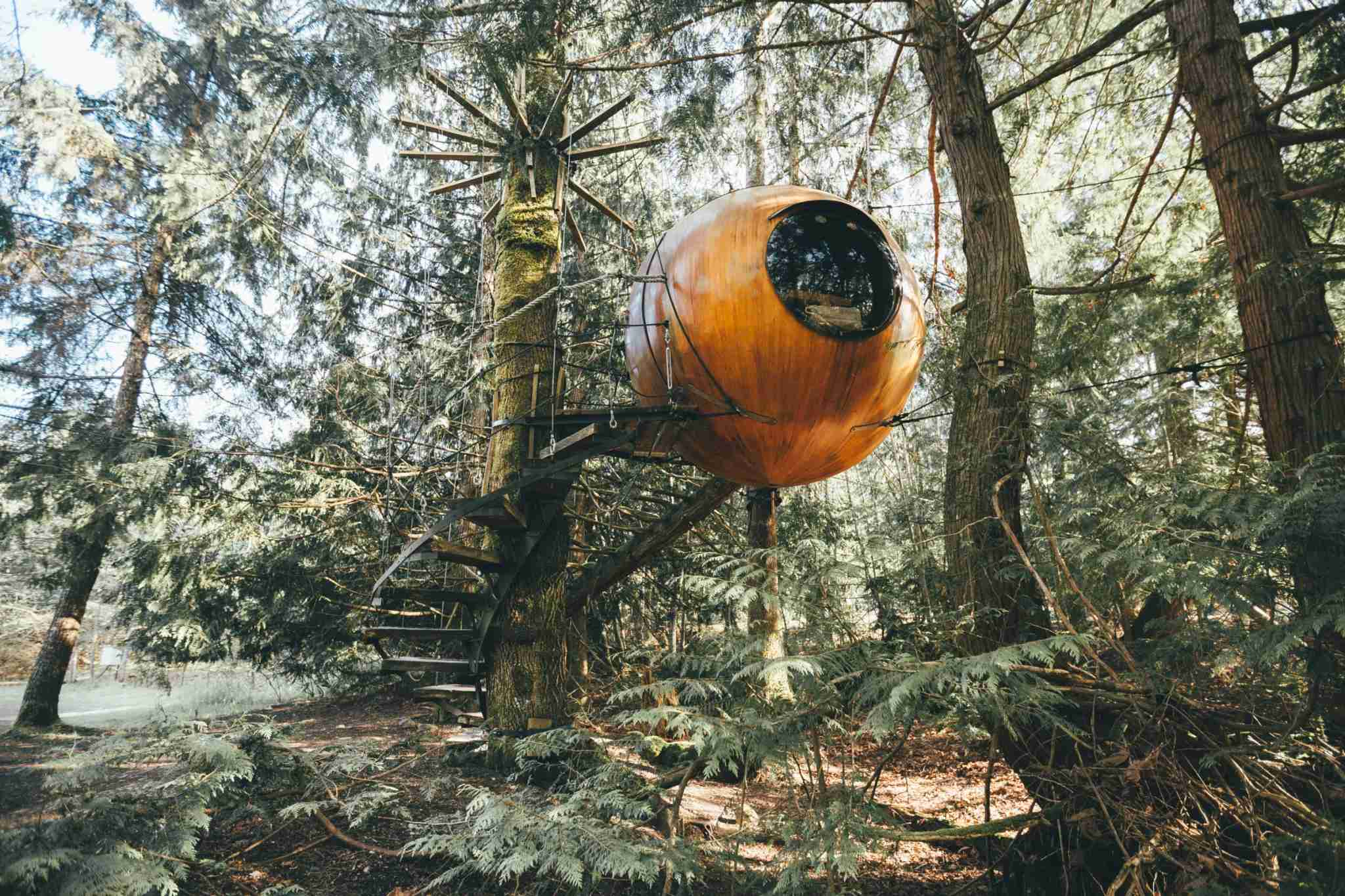 Free Spirit Spheres. Photo Courtesy of K.Kemsley.