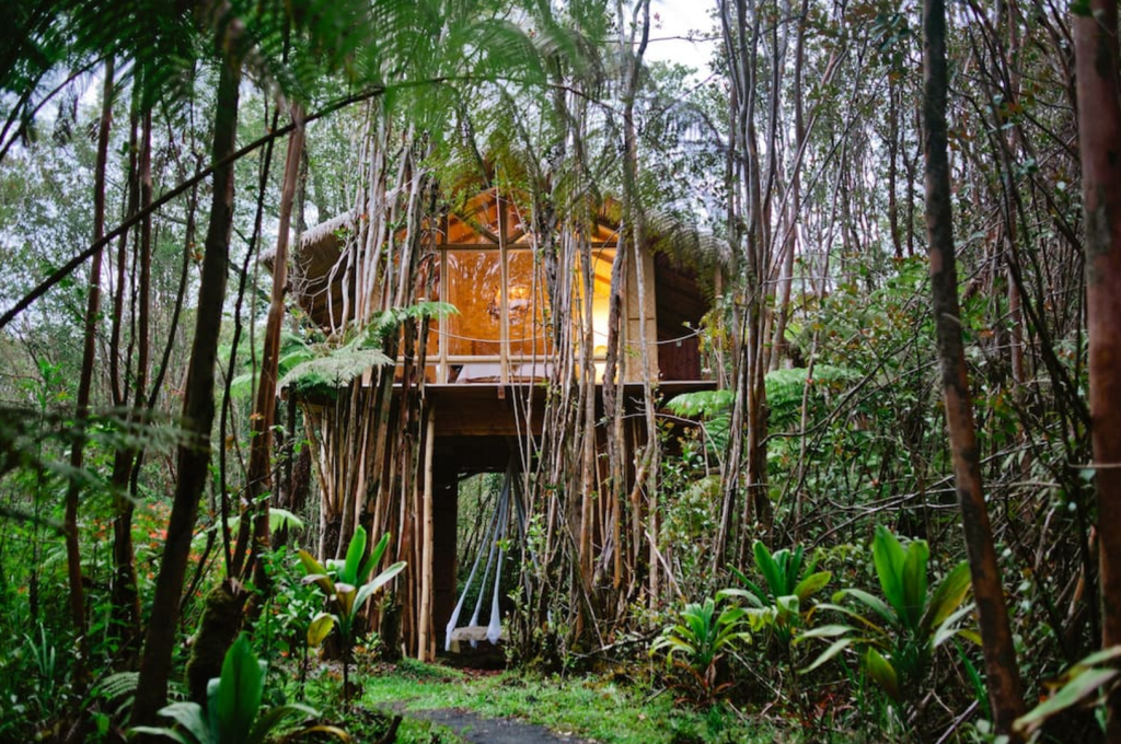 The final tree house is nestled in Hawaiian jungle. Photo courtesy of Airbnb.