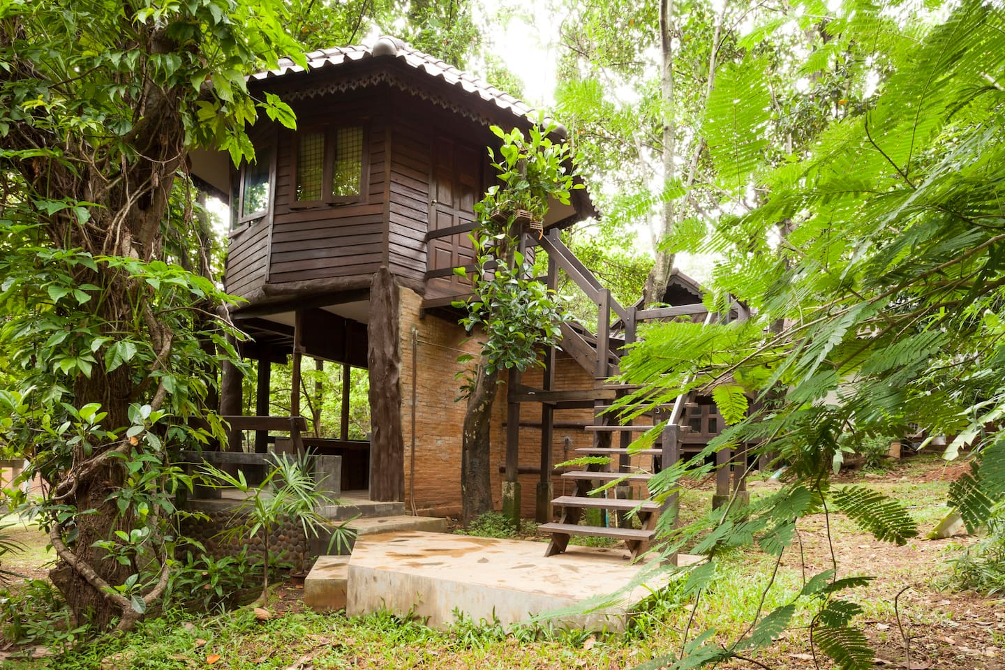 Earn Qantas or Virgin miles for your treehouse rental outside of Chiang Mai, Thailand.