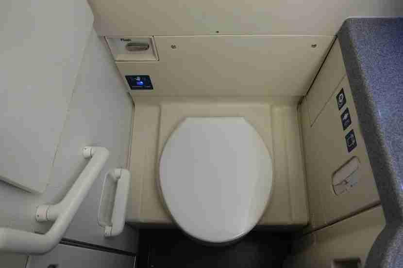 Delta 757 lav toilet