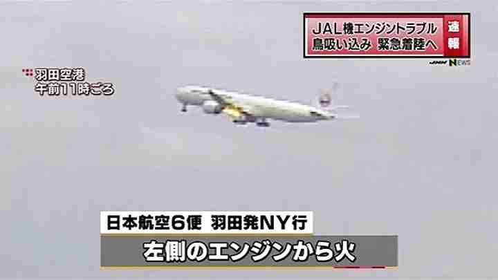 The Boeing 777 with its left engine spewing fire after being struck by birds. (Screen cap from TBS News)