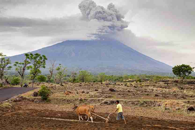 Mount Agung is seen spewing heavy volcanic ash. Photo by Andri Tambunan / Getty Images