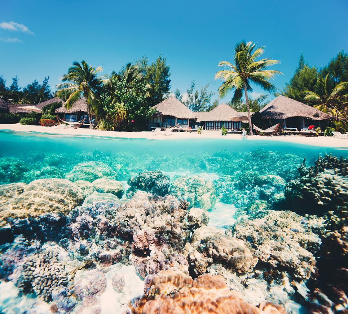 Best caribbean island for single guys