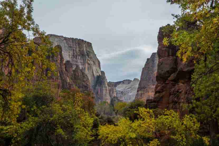 SPRINGDALE, UT - OCTOBER 18: Autumn colors can be seen at Zion National Park on October 18, 2017 in Springdale, Utah.PHOTOGRAPH BY Adam Gray / Barcroft Images (Photo credit should read Adam Gray / Barcroft Images / Barcroft Media via Getty Images)