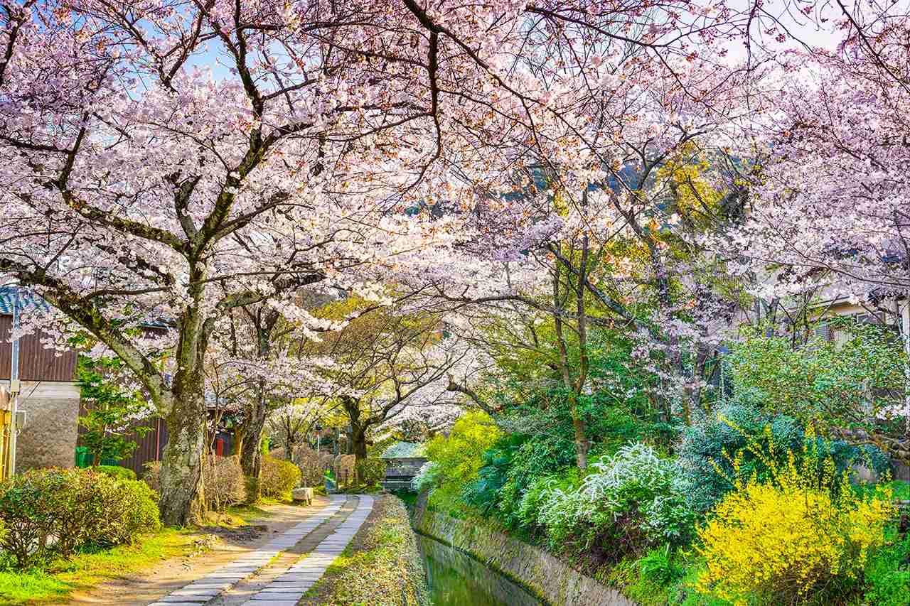 Kyoto, Japan at Philosopher