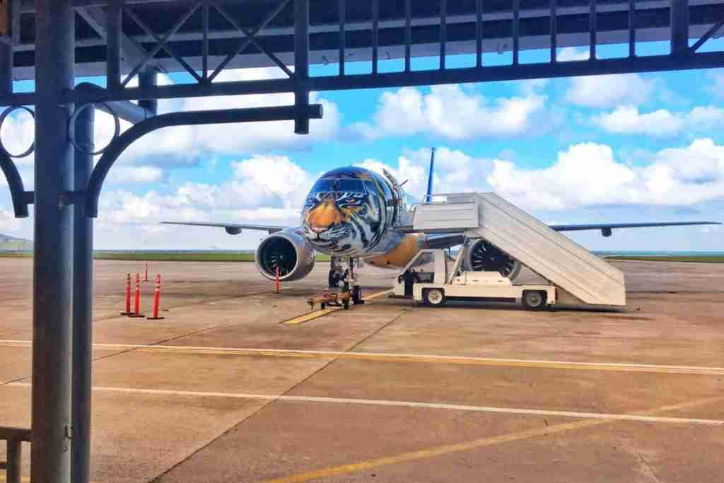 Tiger Livery on the E195-E2. Image via Embraer.