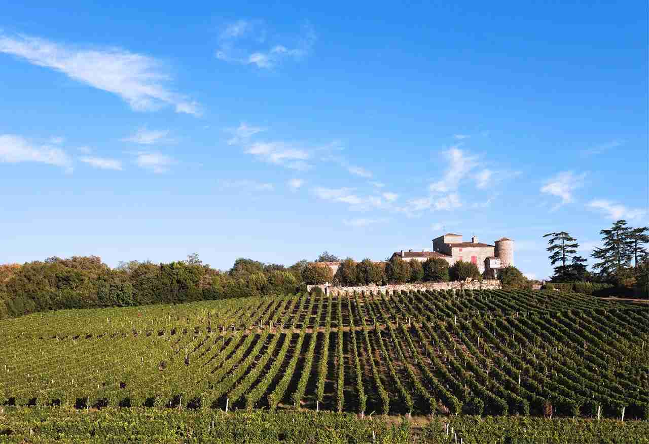 View of vineyards and Chateau Lacaussade, Bordeaux, France. (Photo by Westend61/Getty Images)