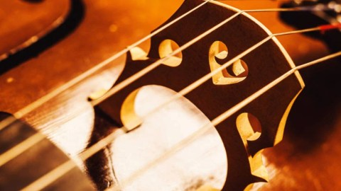 Musician Kicked off AA Flight for Cello Even Though She
