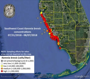 Midweek Red Tide Status Map - August 8, 2018.(Map by Florida Fish and Wildlife Conservation Commission)
