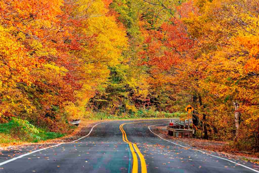 Vermont road trip (Photo by John Greim/LightRocket via Getty Images)