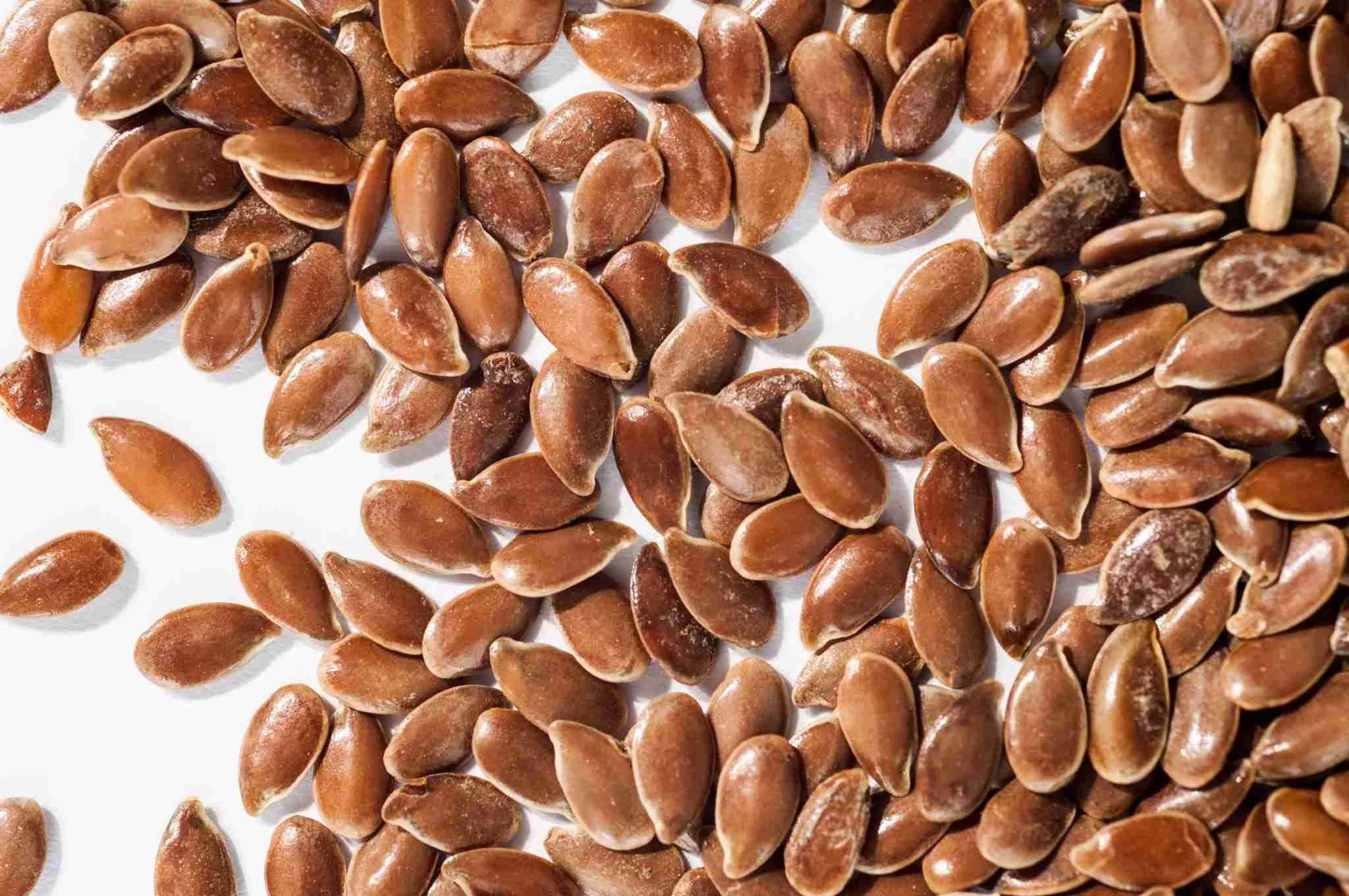 Bed bugs resemble flax seeds, but can grow to double their size. Image courtesy of Wikimedia Commons.