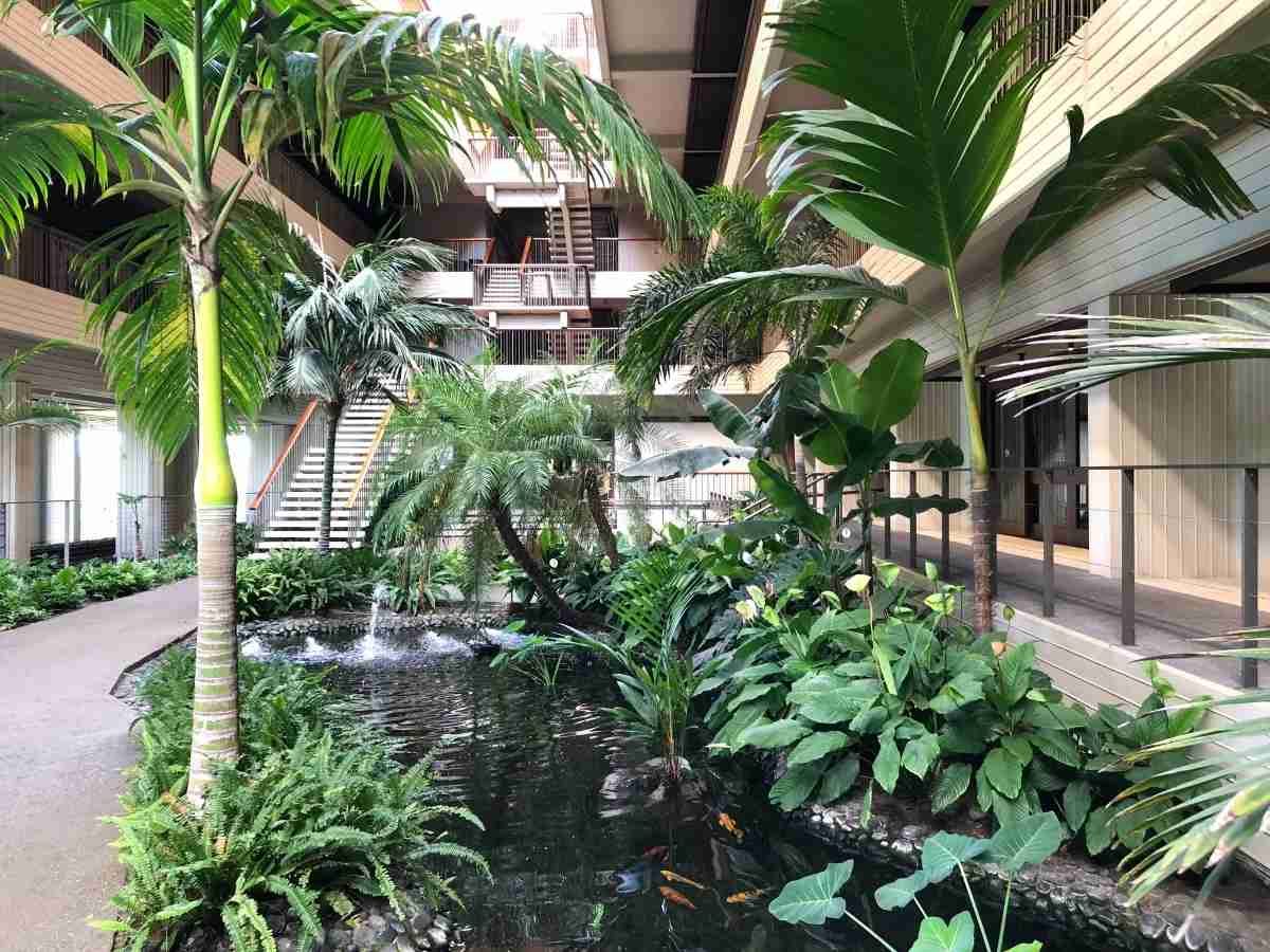 Mauna Kea Beach Hotel Review - Koi Ponds in Tower