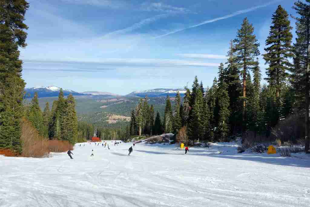 Family Friendly Tahoe Ski Resorts - Northstar Lumberjack