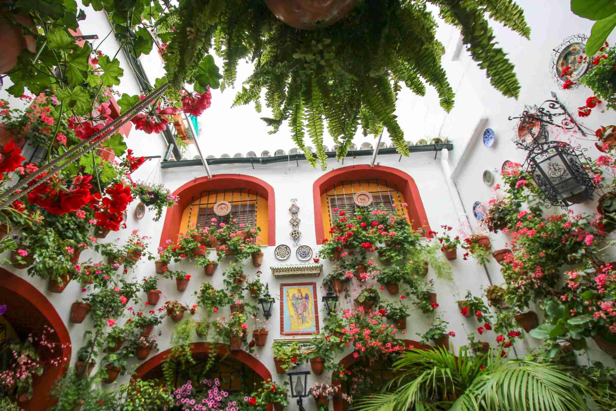The Patios Festival is celebrated during the second and third week of May. Many houses of the historic centre open their private patios to the public and compete in a contest. Both the architectonic value and the floral decorations are taken into consideration to choose the winners. Cordoba, Andalusia, Spain